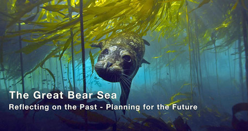 Great-Bear-Sea-Graphic
